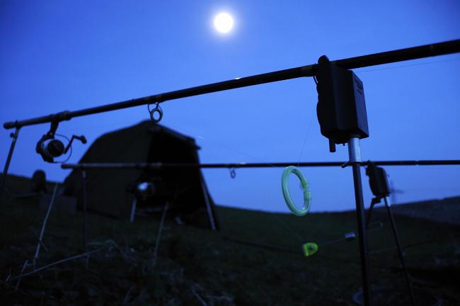Wer im Sommer erfolgreich auf Karpfen angeln möchte, der sollte unbedingt die Nachtstunden fischen.