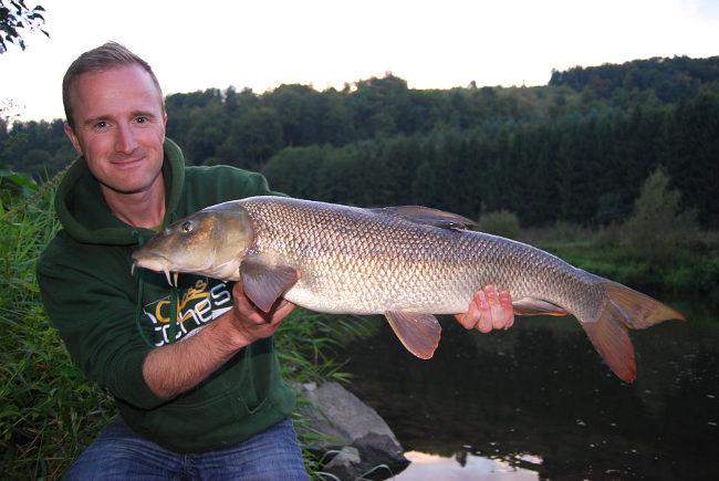 Der größte Fisch in der Testphase: Eine schöne Barbe von mehr als 8 Pfund!